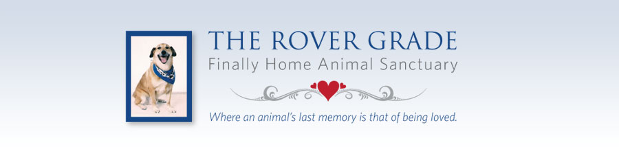 The Rover Grade Finally Home Animal Sanctuary